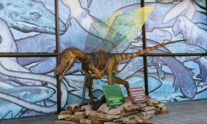 Wings For Dinosaurus, ZOO-ZOO project, 2014